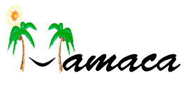 Hispanic-America Musician's and Artist's Cultural Association, Inc. (HAMACA)
